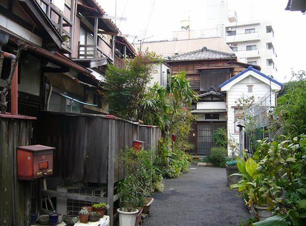 Район Янака